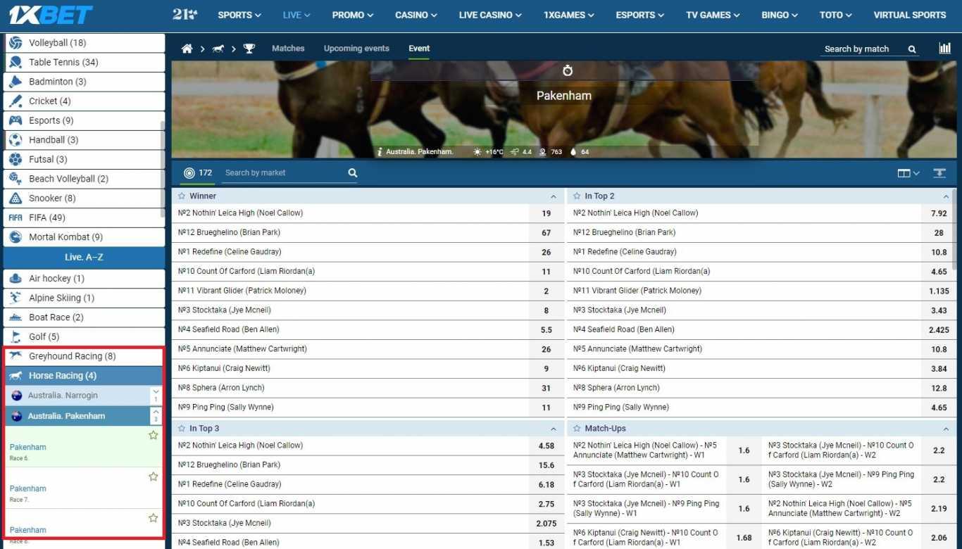 1xbet horse-race